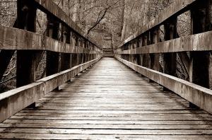 bridge-69396_640